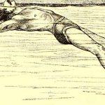 Wyporność ciała w wodzie