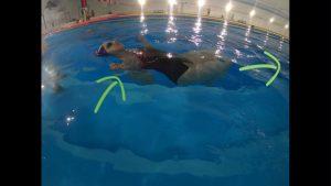 Przejście ramion pod wodą w leżeniu na wodzie na plecach